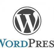 Zakaj WordPress za izdelavo strani podjetja